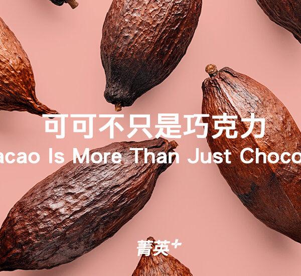 你知道可可不只是巧克力?